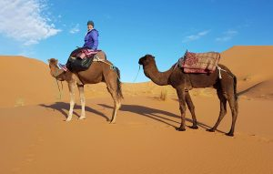 Lisa Collard, a social media manager takes this photo sitting on a camels back in the dessert.
